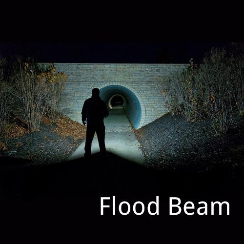 Dorcy Wide Beam LED 6AA Flashlight
